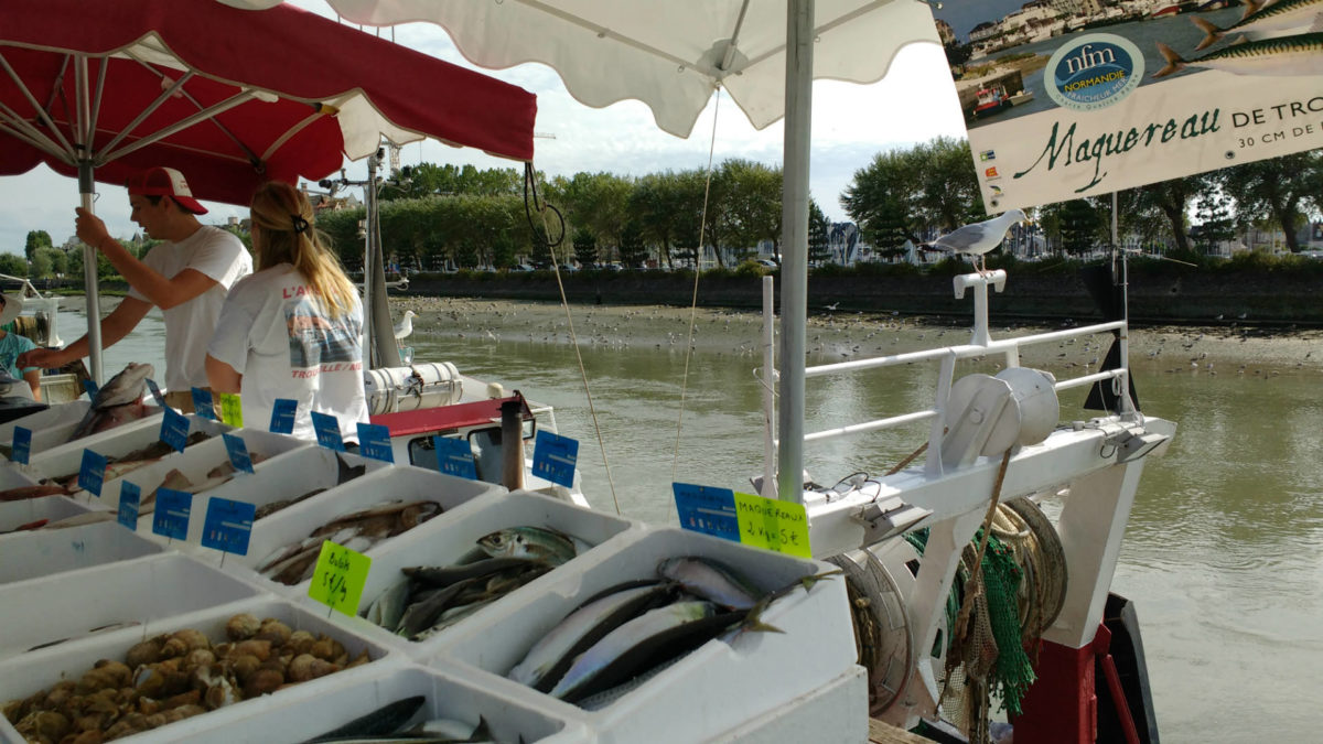 Vente de poisson à la débarque