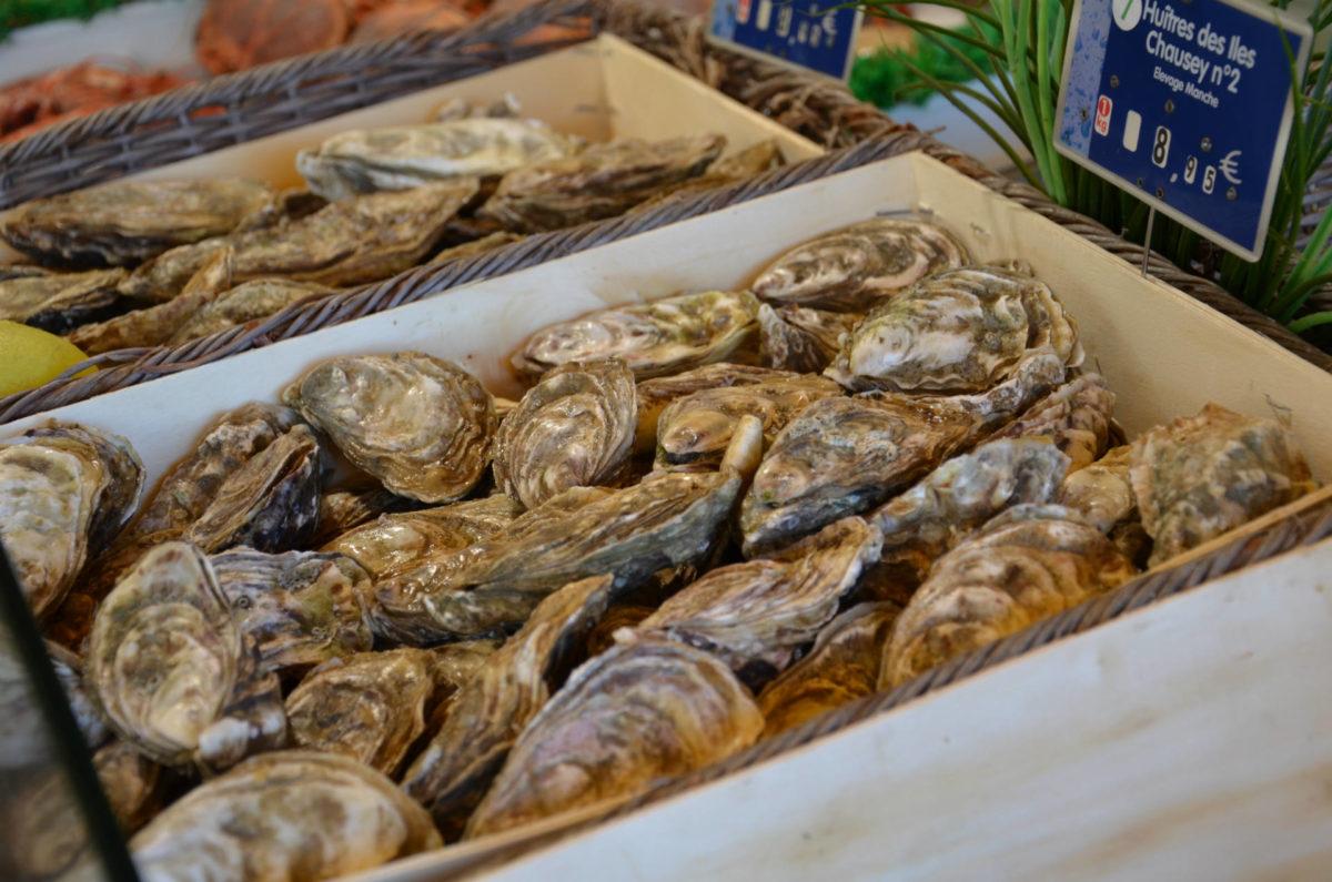 huitres-marché-aux-poissons-Trouville-sur-Mer