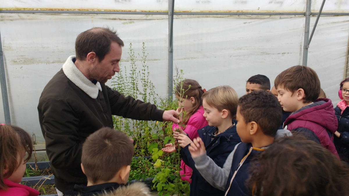 Johan Thyriot dans la serre avec les enfants de l'école René Coty