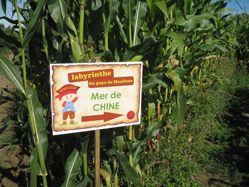 EQUEMAUVILLE-Labyrinthe-du-