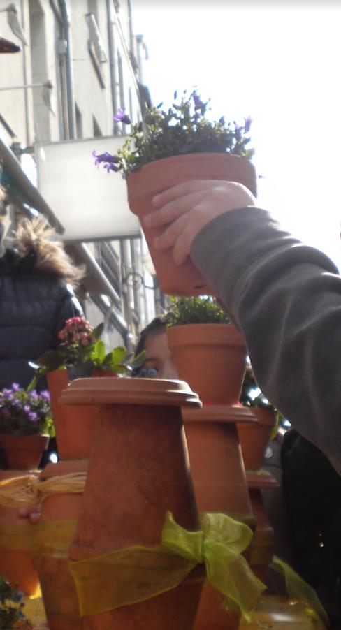 18.Fleurs-Coccinelle