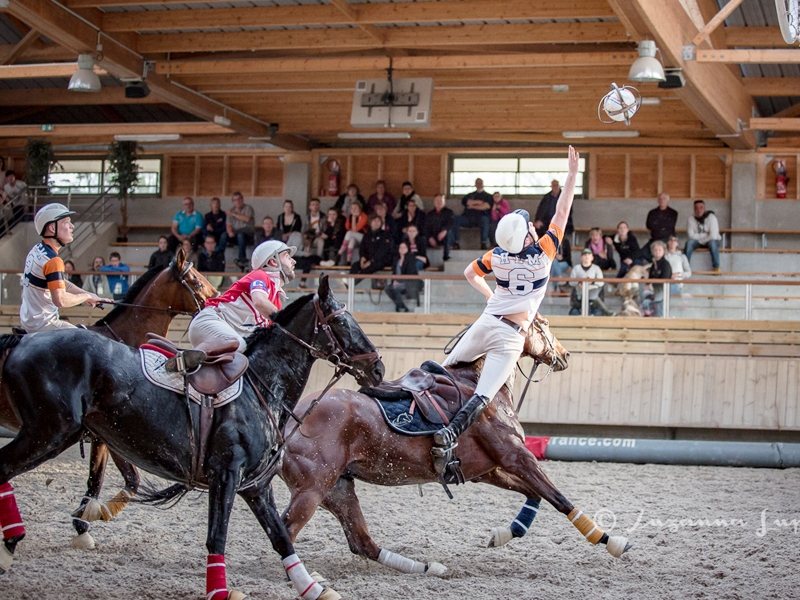 Horse-ball—Suzanna-Lupa-800×600-2