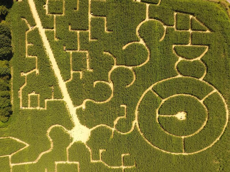 Labyrinthe-2-2021