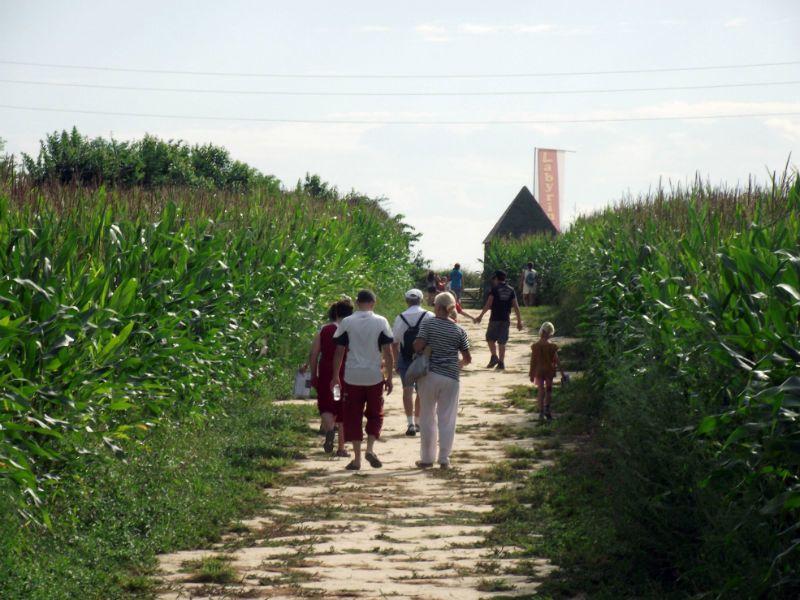 Labyrinthe-de-Honfleur