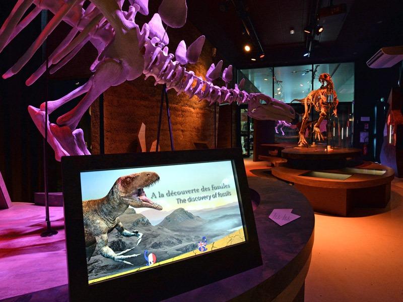 Paleospace-salle-dinosaures