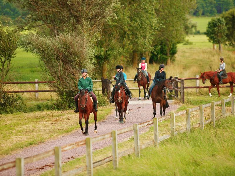 Promenade-cheval-Villers-800×600-3