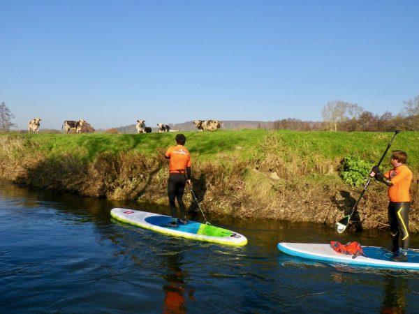 North Shore – Randonnée dans le marais de la Touques en Stand-up paddle