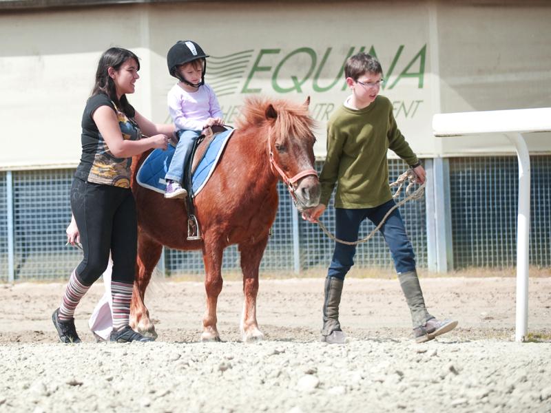 poney–10—-800×600-2